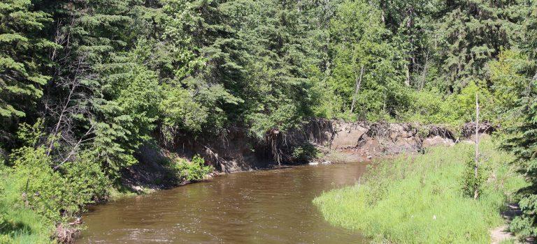 Whitemud Creek
